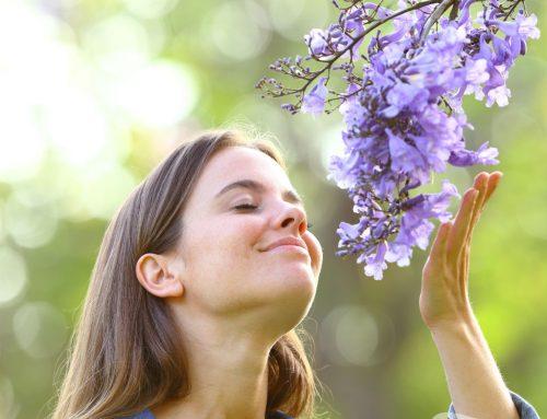 Glück macht gesund